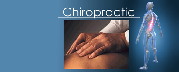 Ordinacija Zivot Petar Dinic Chiropractic Clinic in London Ordinacija Zivot Petar Dinic N1